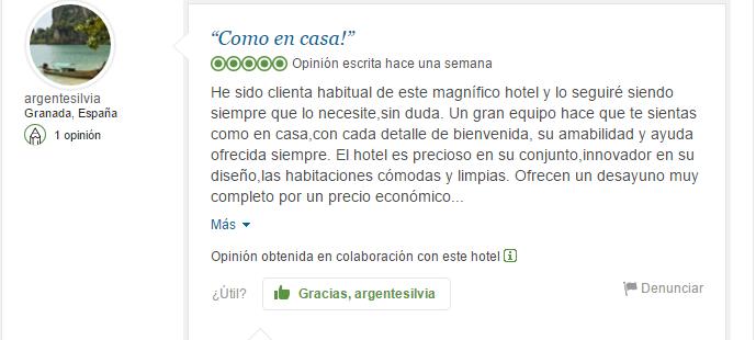 reputacion hotel del pintor1