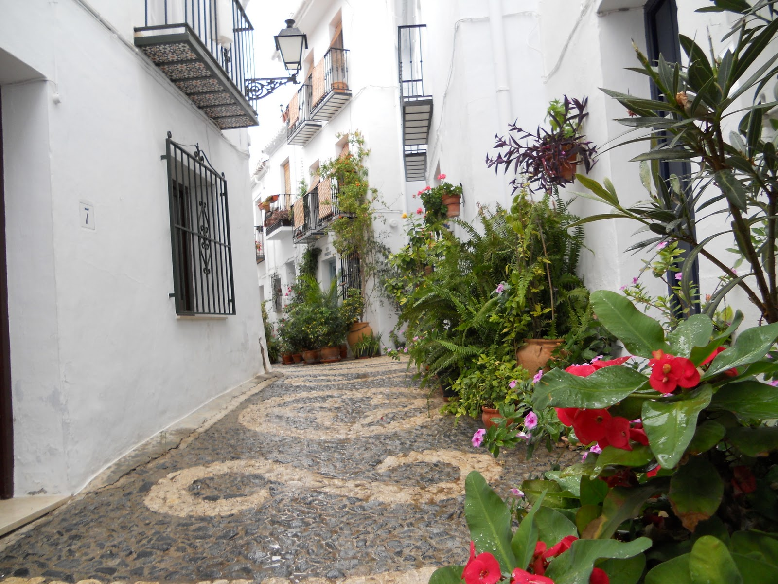 Old Town Frigiliana